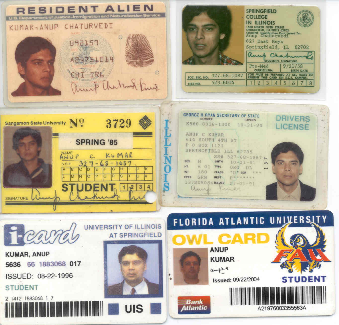 Some of my Identification Cards
